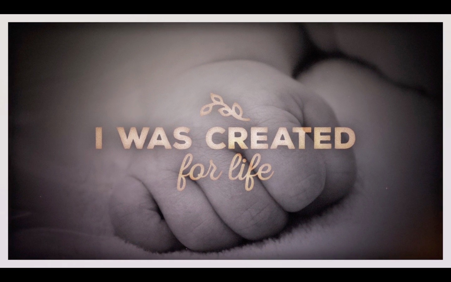 Created For Life // January 19, 2020